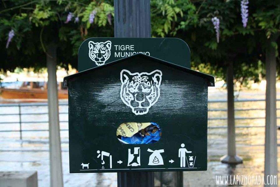 tigre-municipio