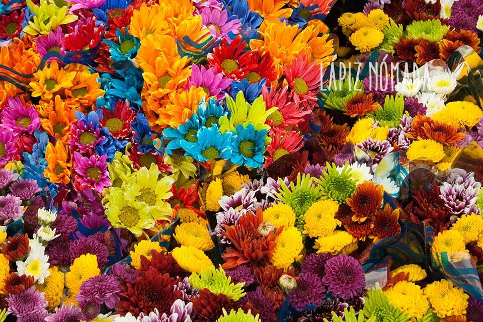 De flores y frutas en el mercado de Paloquemao | Bogotá