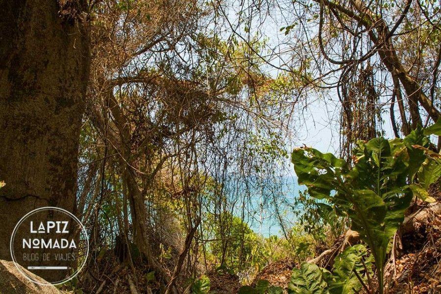 tayrona-l%C3%A1piz-n%C3%B3mada-2-900x600 ▷ Parque natural Tayrona   Precios y datos ✅