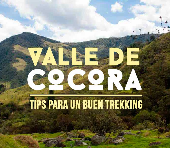 Parque Nacional Valle del Cocora: trekking al límite de luz