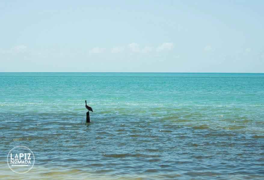 Lápiz-nómada-blog-viajes-isla-del-carmen-IMG_0051