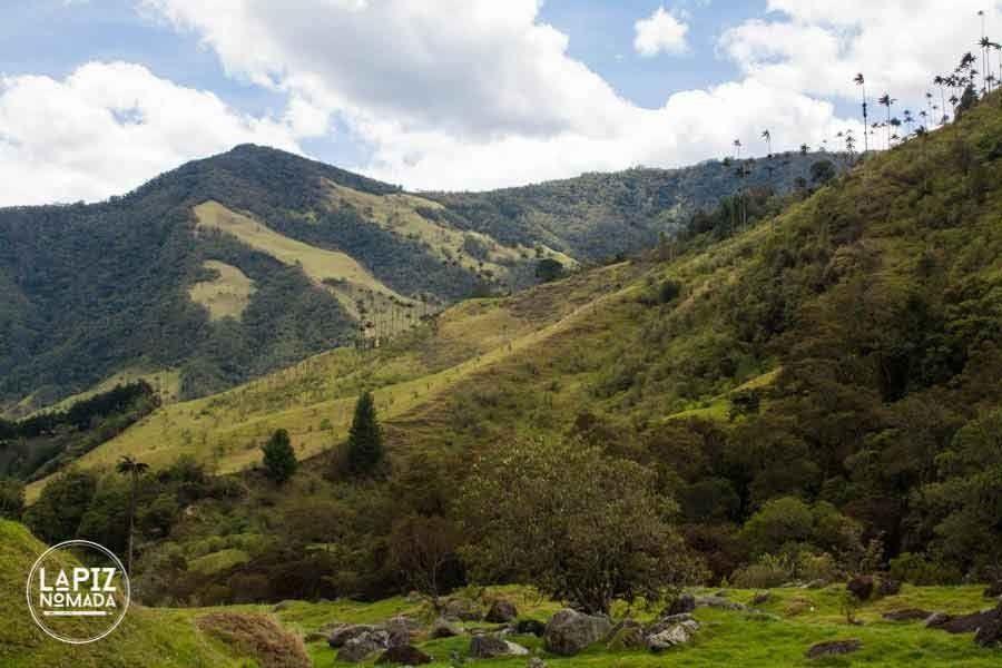 parque nacional del cocora