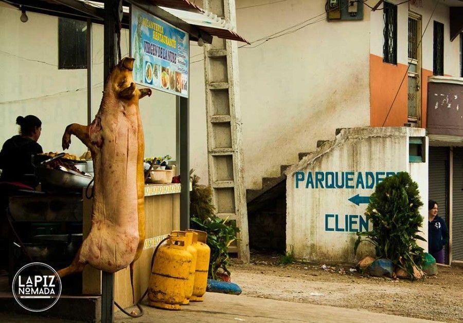 Lápiz-nómada-blog-viajes-cerdo-casa-del-árbol